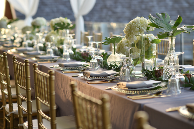 enhance your party rental